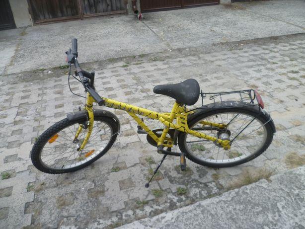 rower młodzieżowy 7biegowy Pegasus