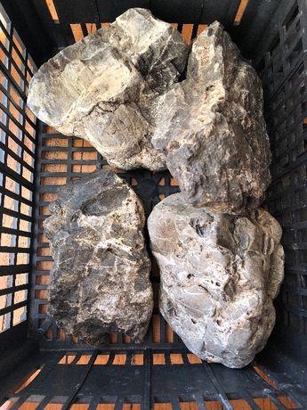 Akwarium skały kamienie hardscape sesja