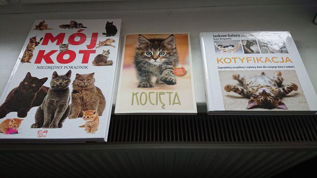 Koty. Nowe książki o kotach. Kotyfikacja.