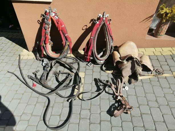 Homonta krakowskie góralskie zdobione piękne konie unikatowe