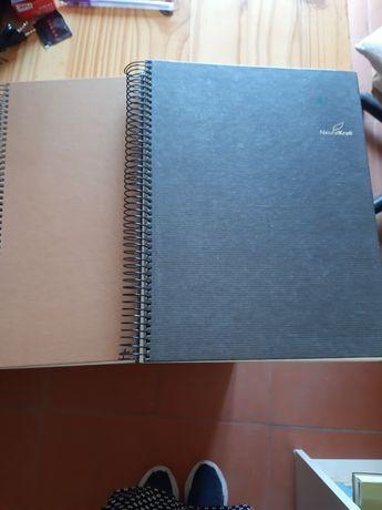 Lote de cadernos Ambar