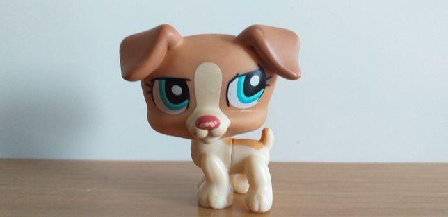 LPS Littlest Pet Shop Jack Russel Terier