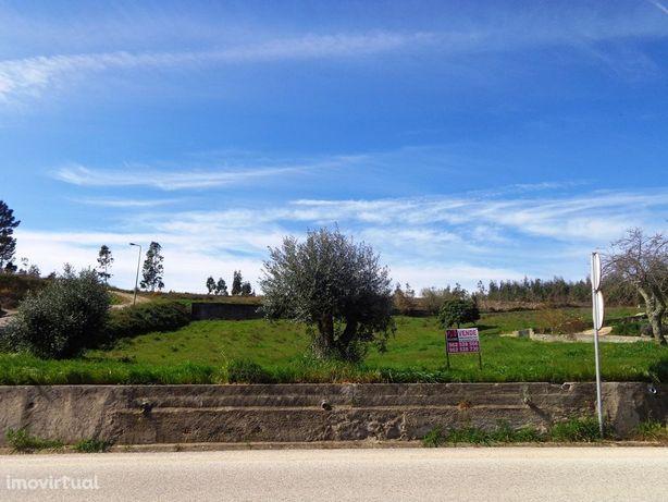 Vende-se Terreno Rústico - Junceira - T2100/18