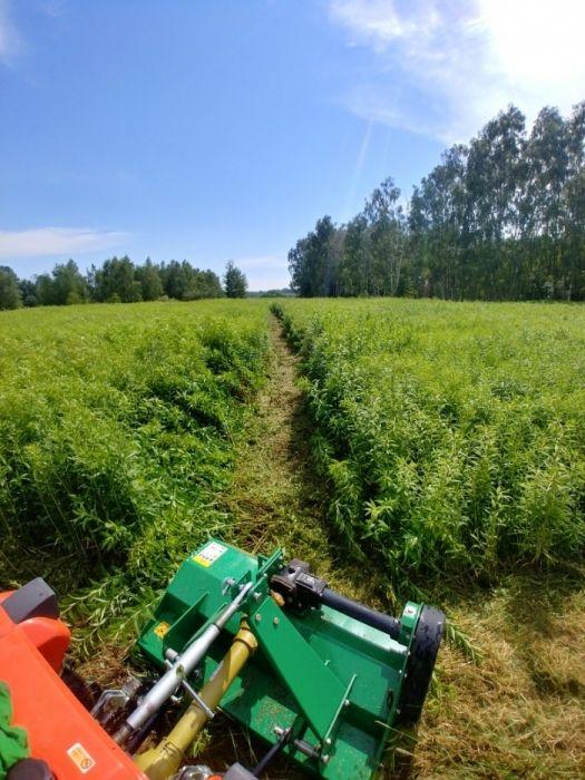 Mini traktorek Koszenie traw, Glebogryzarka Separacyjna Prace ogrodowe Warszawa - image 1