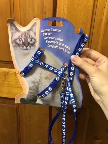 Шлейка для котенка/щенка