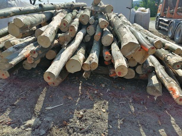Drewno buk kominkowe opałowe gril ogród twarde