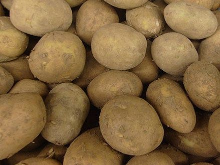 Продам картошку дёшево!
