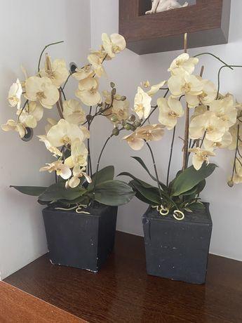 Vaso de orquideas de 24 cm + 14 cm