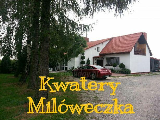 Tanie noclegi i kwatery pracownicze w Aleksandrowie Ł. Milóweczka Łódź