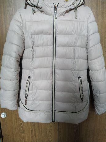 Куртка женская не дорого