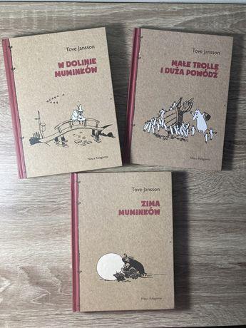 Muminki: Zima Muminków, W dolinie Muminków, Małe trolle i duża powódź