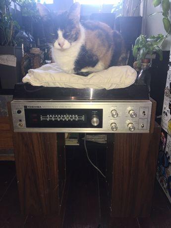 Gira discos Toshiba a funcionar