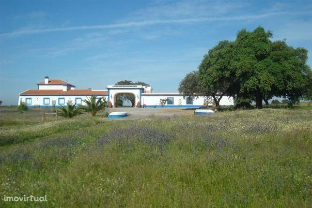 Herdade/Aerodromo/Agricultura/Turismo Rural E Hipismo - 33,5 Hectar...