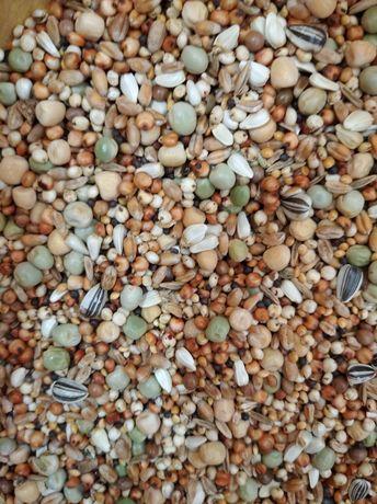 BKM odchowowa mieszanka dla młodych gołębi bez pszenicy i kukurydzy 25