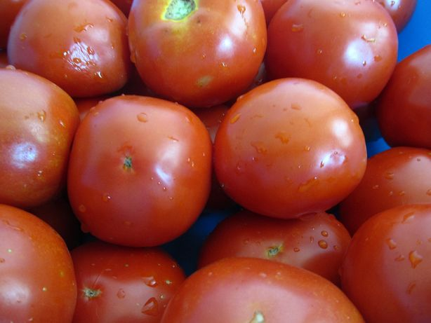 Семена помидор с любительской коллекции.