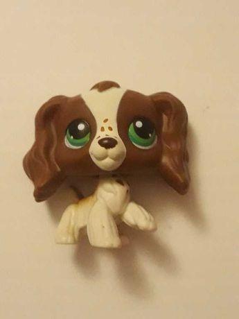 Lps spaniel #156 pop unikat dog jamnik shorthair littlest pet shop
