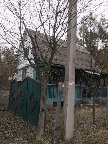Продам дачу 43 кв. м. (село Пилиповичи,Бородянский район)