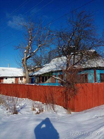 Продам будинок в селі. Шибеное . Бородянський рн.