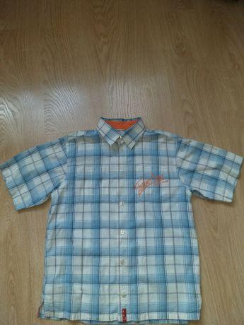 Koszula chłopięca z krótkim rękawem Tup Tup rozm. 140 cm