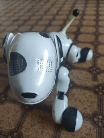 Интерактивная собака-робот Zoomer оригинал! В отличном состоянии.