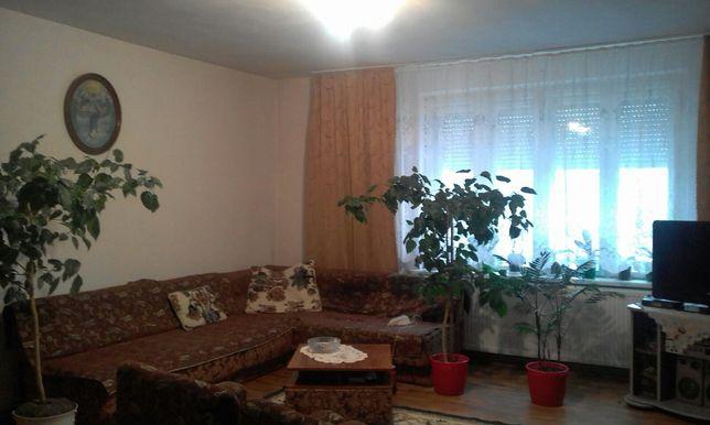 1-кімн. центр вул. Ракоці