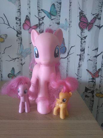 Koniki pony dla dziewczynki