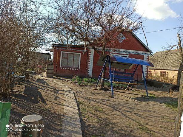 Продам будинок с.Давидківці