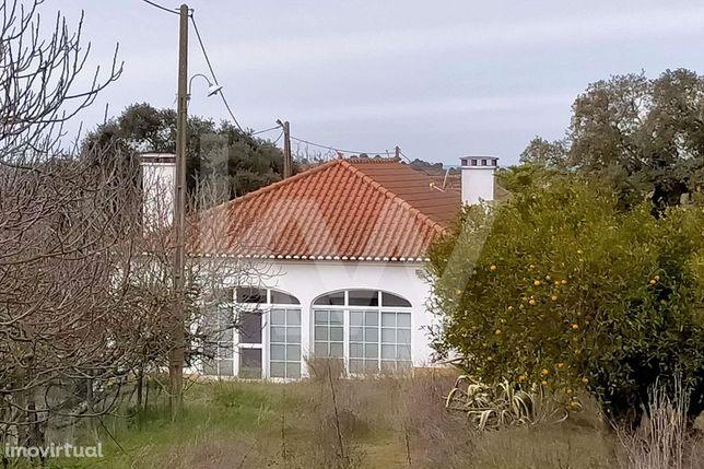 Quinta em Mombeja, cerca de 12 hectares, com casa principal T2, pequen