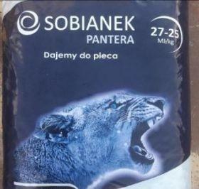 Ekogroszek polski sobianek pantera
