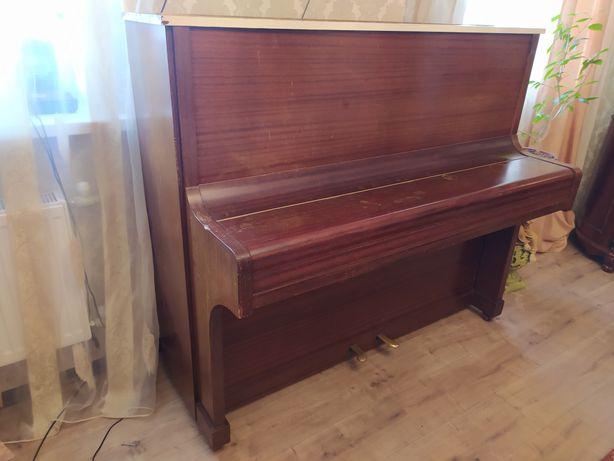 Пианино Zimmermann