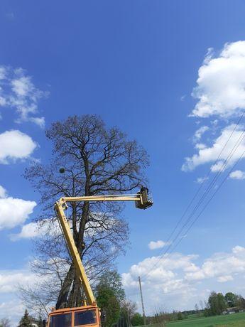 Uslugi podnosnikiem koszowym zwyżka wycinka drzew Star 266