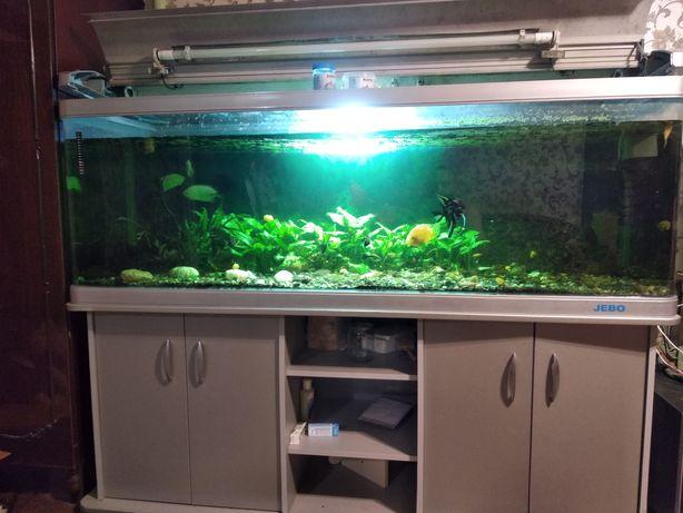 Продам фирменный, заводской аквариум Jebo на 500 литров