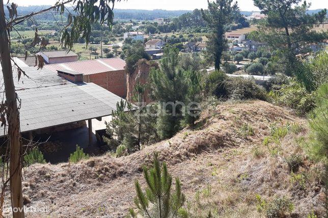 Terreno com 6550 m2 na Redinha