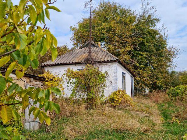 Продам дом з ділянкою
