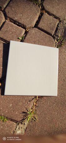 Płytki ścienne 20x20 białe.