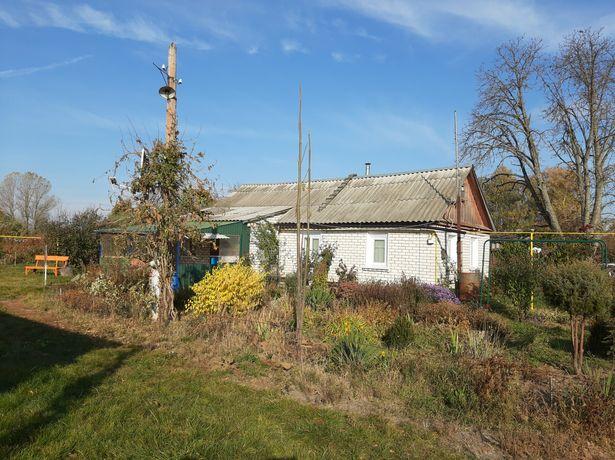 Продам будинок Житомирська область