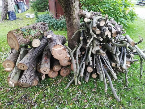 Drewno orzech włoski ok. 2,5 m3