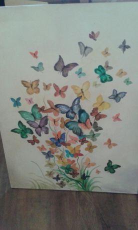 obraz motyle