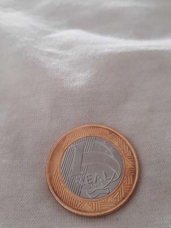 Colecionador moedas raras real brasileiro