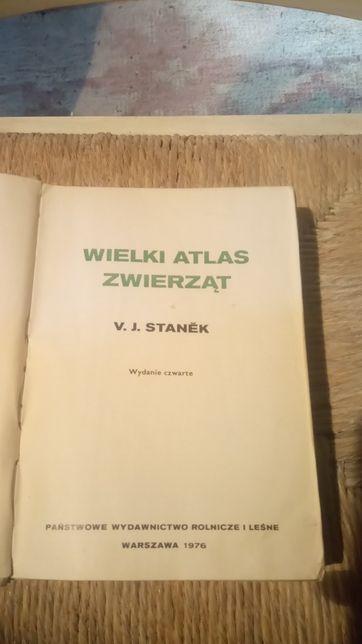 Wielki Atlas Zwierząt Stanek