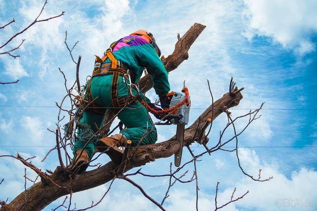 Спил и обрезка деревьев, садовые работы, высотники.
