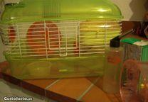 Gaiola e Transportador para Hamsters c/ acessórios