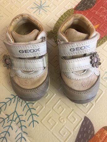 Кроссовки GEOX 19 размер