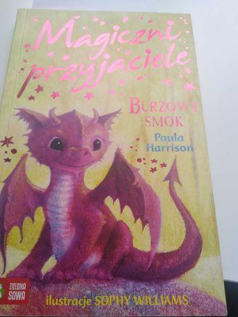 """Książka,, magiczni przyjaciele burzowy smok"""""""