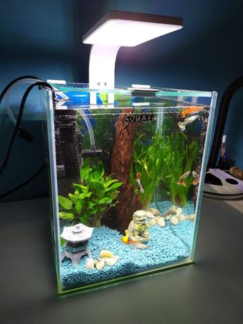 Akwarium kompletne! AQUAEL SHRIMP SET SMART 10L