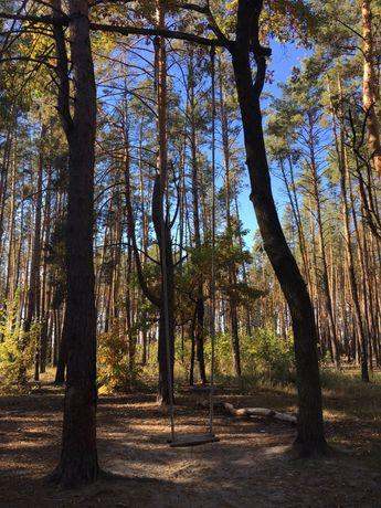 Земельные участки в лесу под застройку (Житомирская трасса).