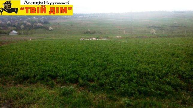 Продам земельну ділянку у передмісті Кам'янця-Подільського