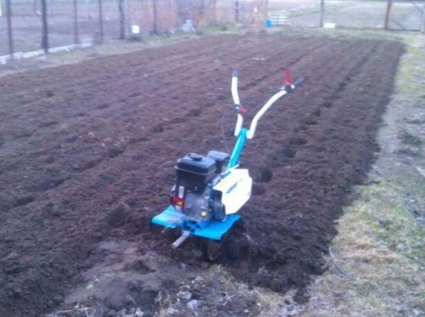 Культивация мотоблоком посев газонной травы