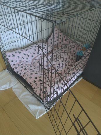 Crate/Jaula para cão