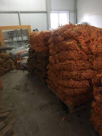Marchew burak ziemniak sadzeniak paszowy kalarepa
